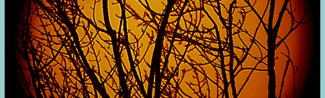 Sole-tramonto-14-02-24-17-34-11-h-16-34-11-UT