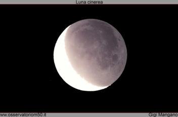 Luna cinerea 21 01 2018