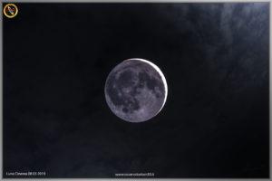 luna-cinerea-08-03-2019