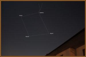 img_1761-jpg-grande-quadrato