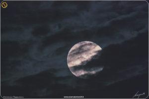 luna-05-06-2020-%e2%80%8e2020-1