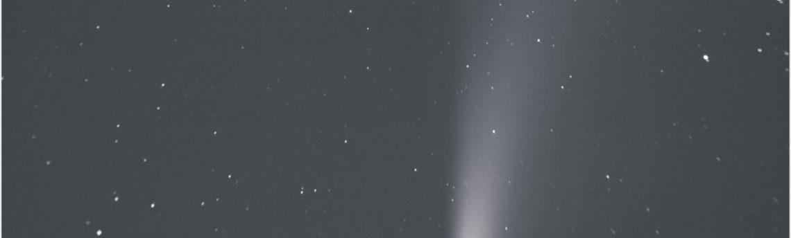cometa Neowise